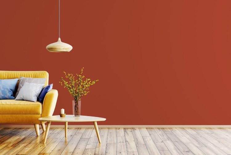 Peinture mur marron plaisir de jaspe